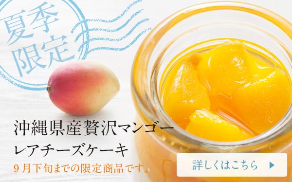 夏季限定!沖縄県産贅沢マンゴーレアチーズケーキ